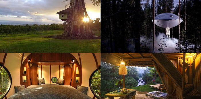 The 16 Most Unique Treehouse Hotel Designs