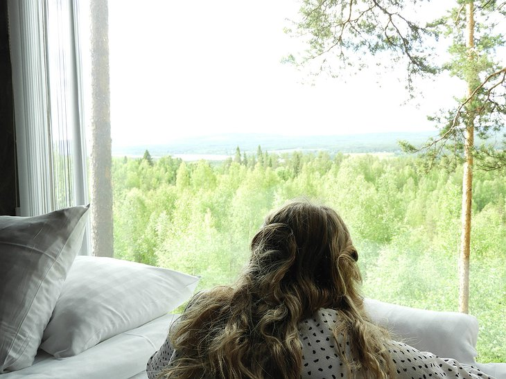 Treehotel Window To Nature