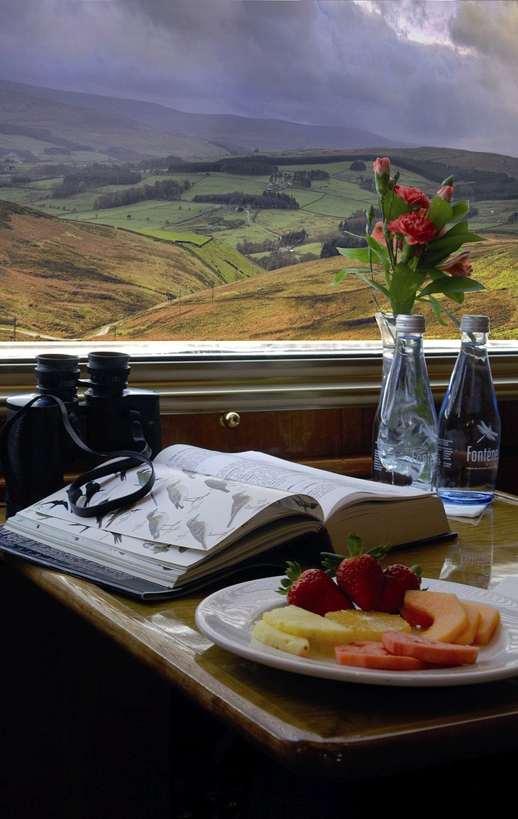 The Blue Train Window View