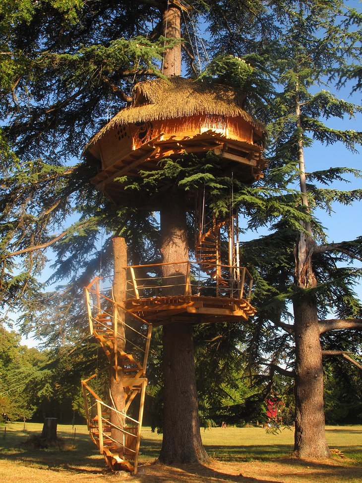 Sur Un Arbre Perche tree house
