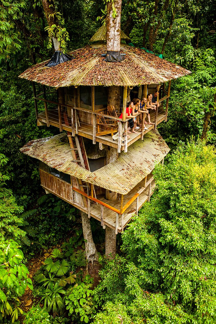 Main treehouse