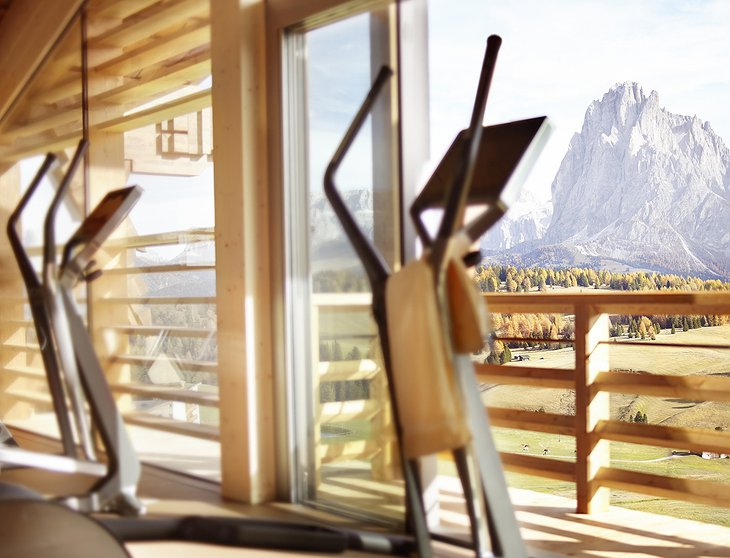 Gym with Alps views