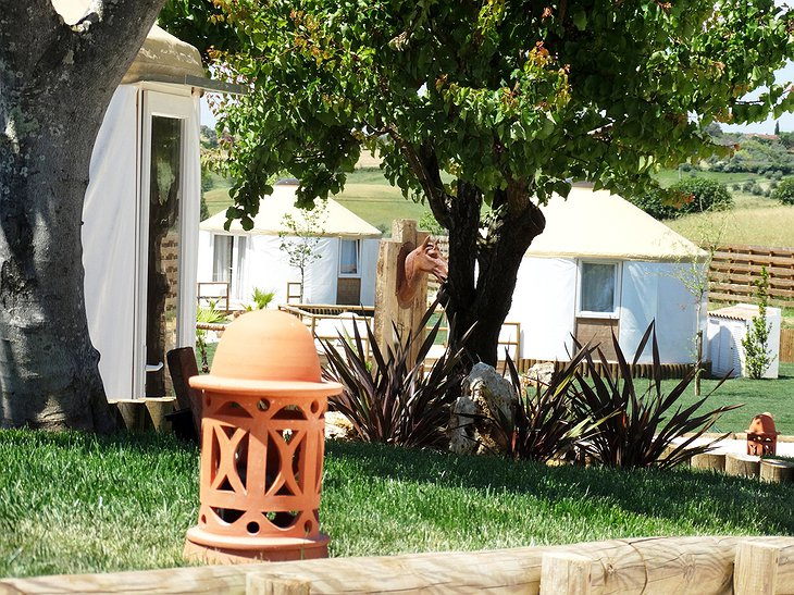 Quinta M hotel with yurts