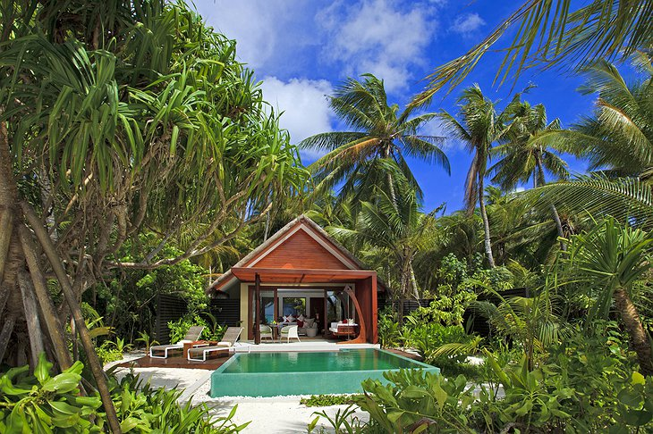 Bungalow in the jungle of Maldives