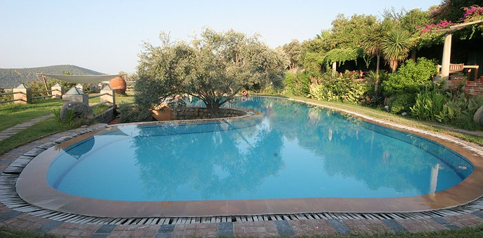 Antik Zeytin Hotel & Art - Sea Breeze And Olives In The Aegean Region