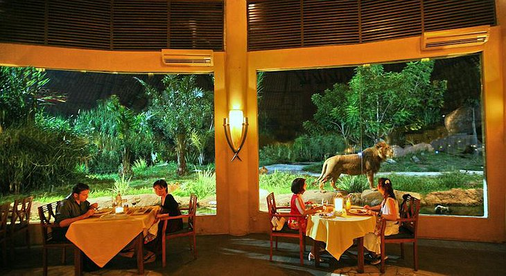 Mara River Safari Lodge restaurant with a lion in the background