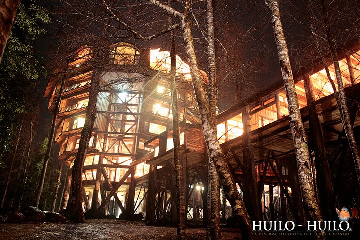 Hotel Baobab wooden structure at night