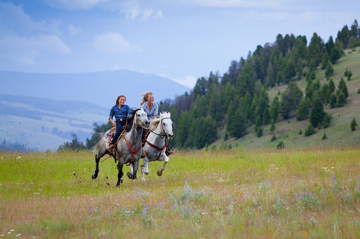 Horse riding in the wilderness of Montana