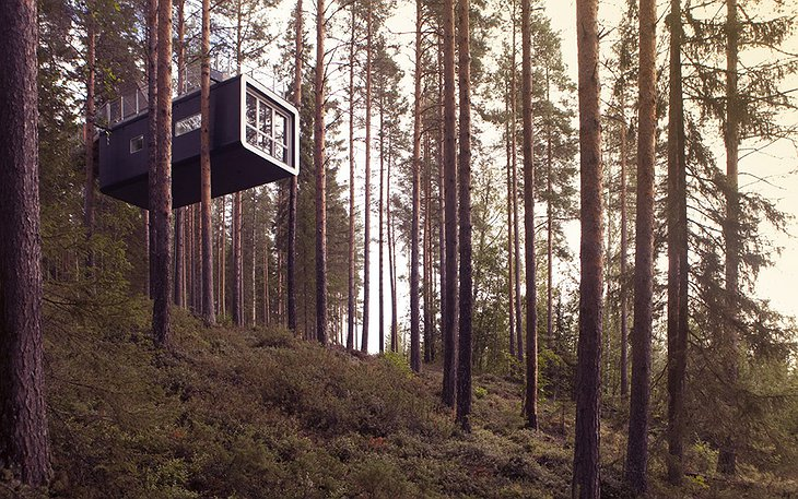 The Cabin tree house