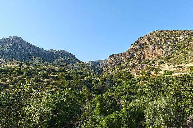 Nature around Makris Gialos, Crete