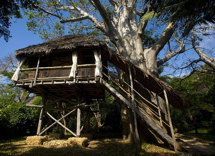 Chole Mjini Lodge tree house