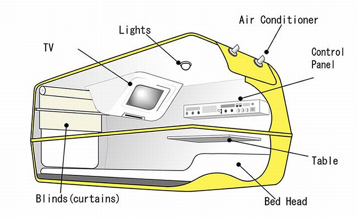 Design and functions of the capsule