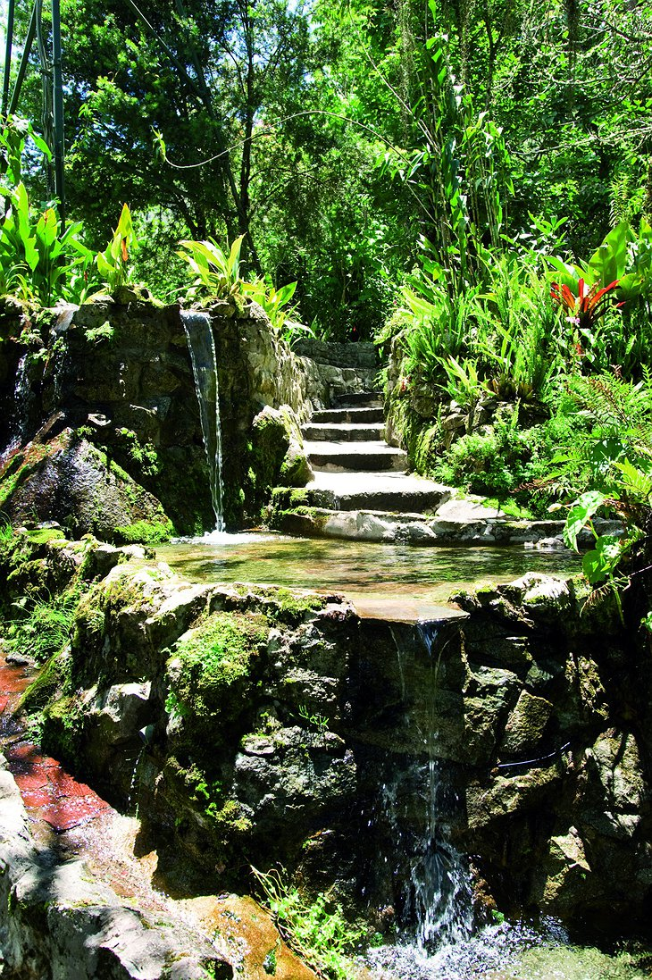 Machu Picchu Sanctuary Lodge little waterfall