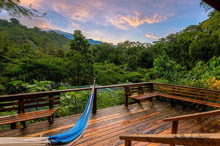 Finca Bellavista sunset from hammock