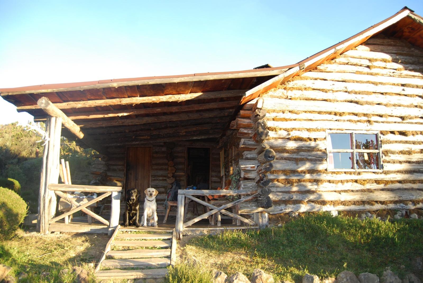 Rutundu Log Cabins Mt Kenya 1