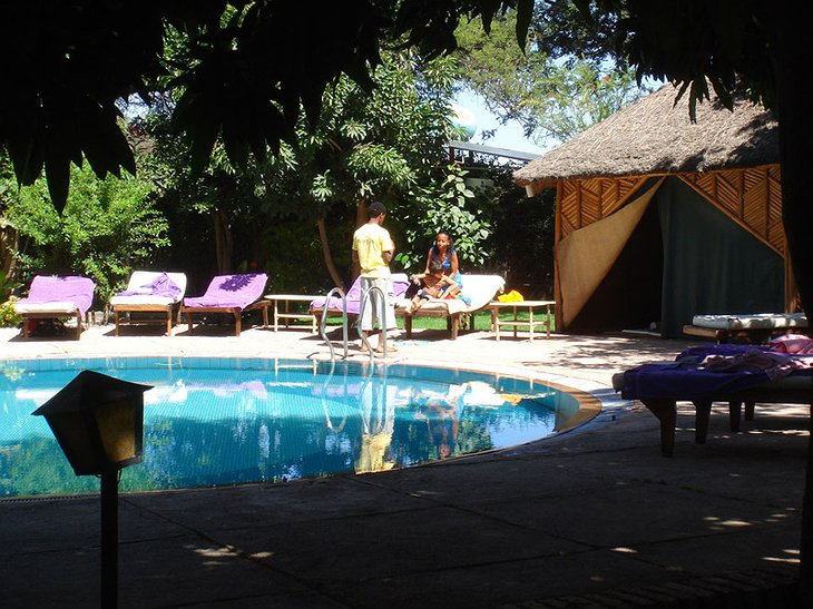 Safari Lodge Adama hotel pool sunbathing