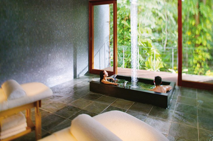 Healing Waters Spa bath tub with jungle views