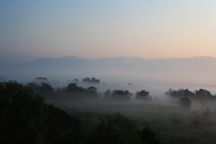 Early morning mist at the border of Myanmar, Thailand and Laos