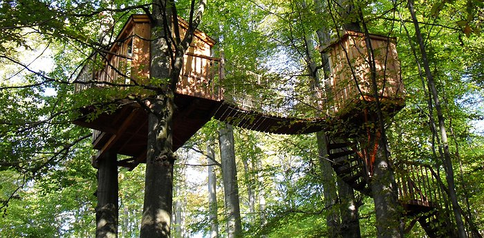 Baumhaushotel Solling - Dreamy Treehouses In An Experimental Forest