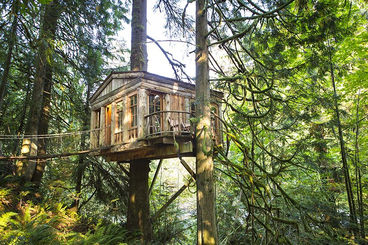 Temple Tree House