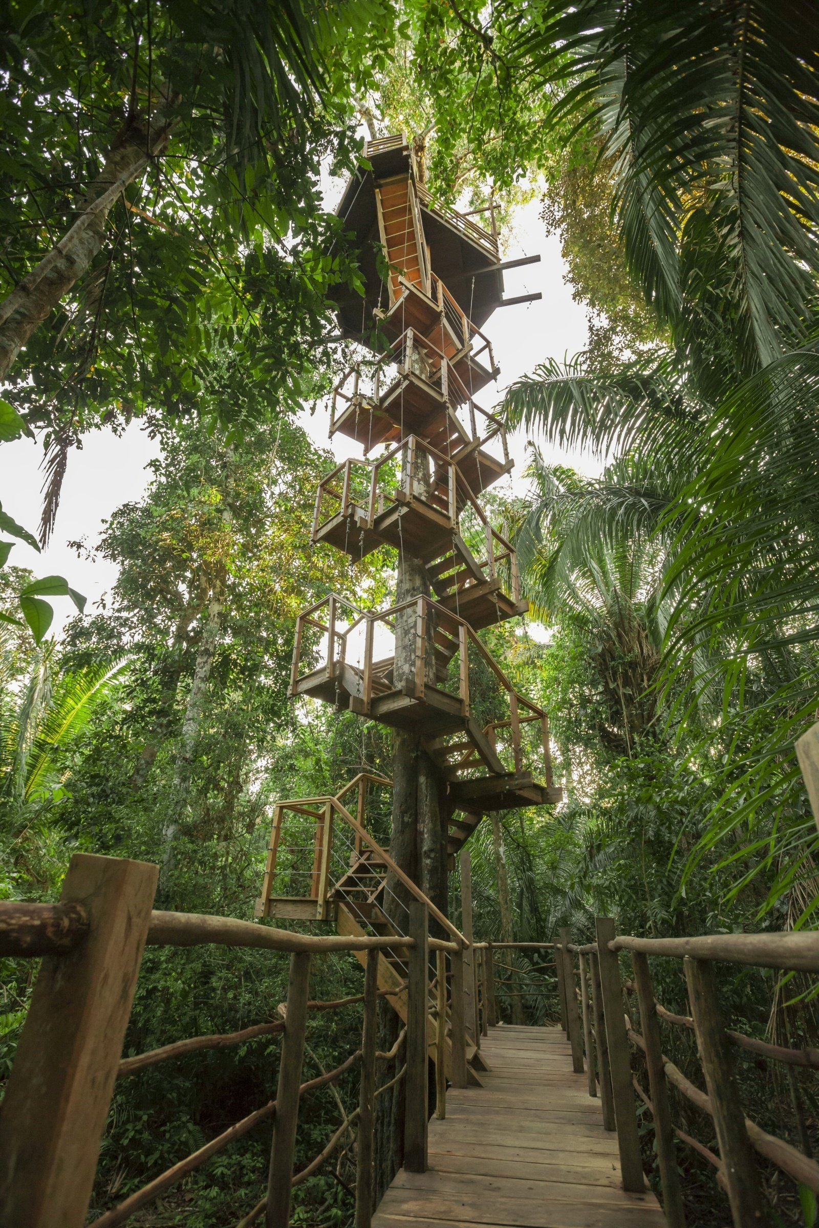 Treehouse Lodge Iquitos Tree Top Canopy Bungalows With