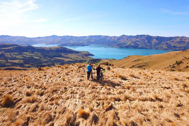 New Zealand wild nature biking