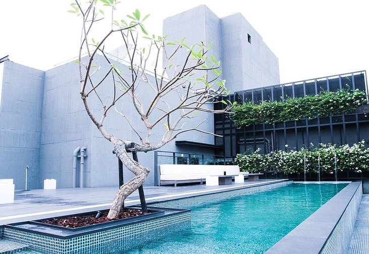 Hotel Proverbs Taipei rooftop swimming pool with a tree