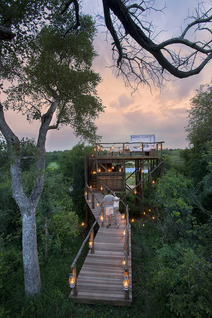 Tinyeleti Treehouse wooden bridge