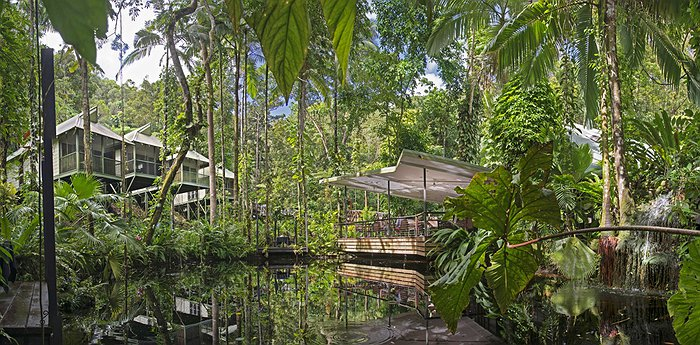 Daintree Eco Lodge and Spa - Aboriginal Paradise In The World's Oldest Jungle