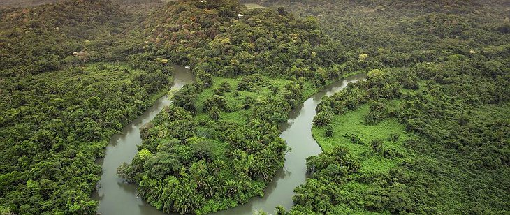 Jungle panorama from the air