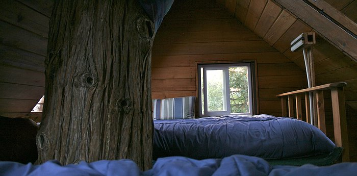 Cedar Creek Treehouse - Off-The-Grid Adventure In A Treehouse