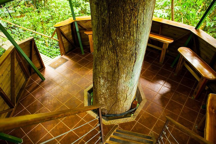 El Castillo treehouse stairs