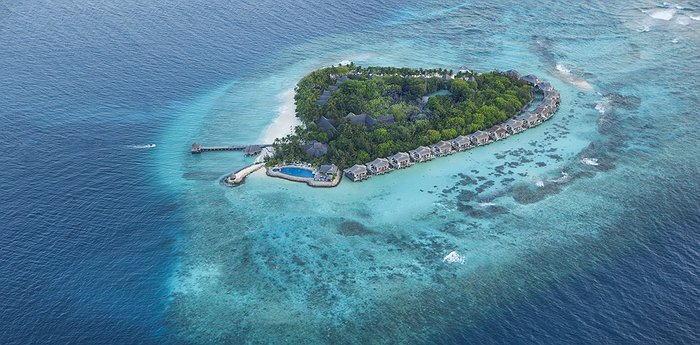 Taj Coral Reef Resort & Spa - Crown Jewel Of The Maldives