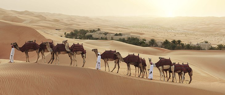 Qasr Al Sarab Desert Resort camel ride