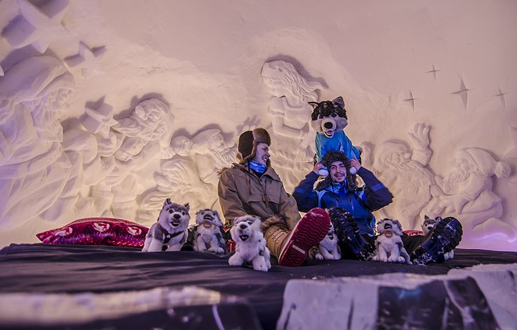 Ice room with couple and husky plush