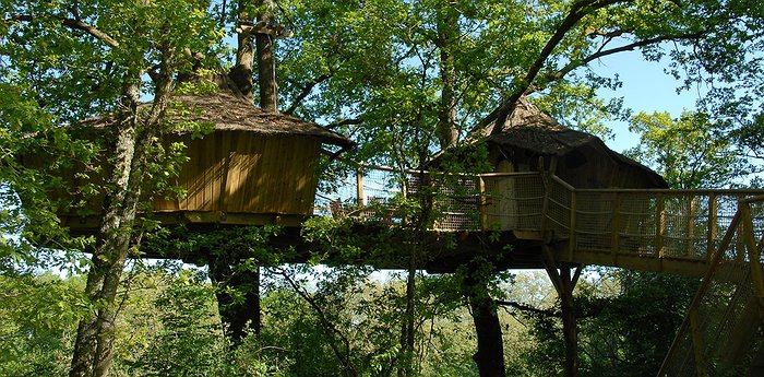 Tree Houses Alicourts - Luxury treehouses in French country resort