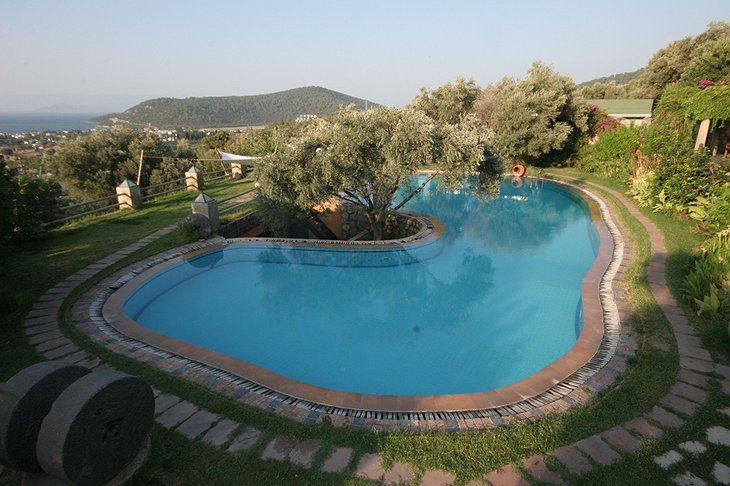 Antik Zeytin Hotel swimming pool