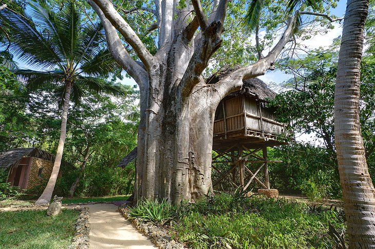 Chole Mjini Lodge treehouses