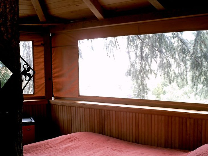 Bed view from tree house