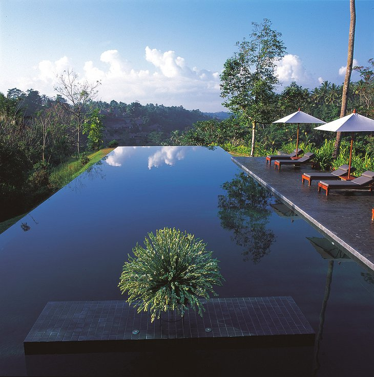 The award winning swimming pool of Alila Ubud