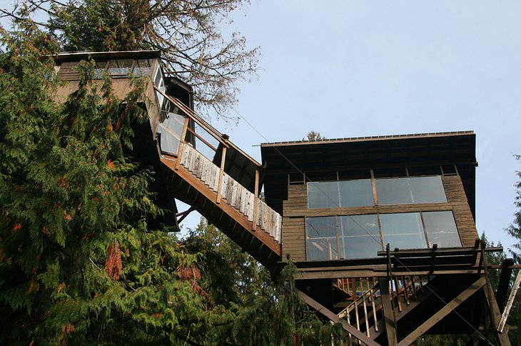 Cedar Creek Treehouse on the canopies