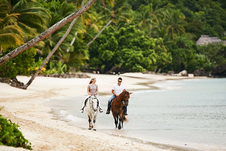 Laucala Island beach horse riding