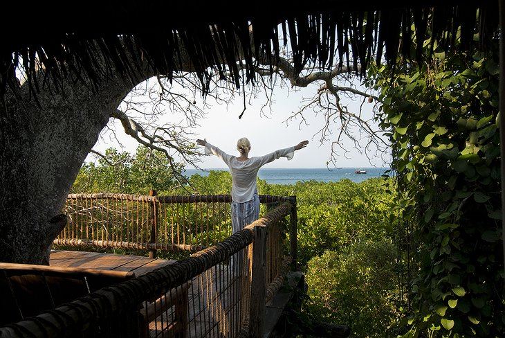 View from the treehouse on Chole Island