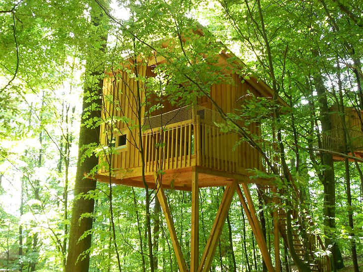 Baumhaushotel Solling treehouse in the green forest