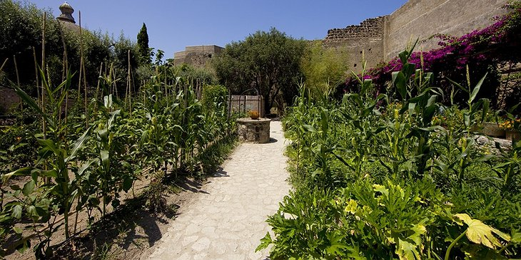 Albergo Il Monastero vegetable garden