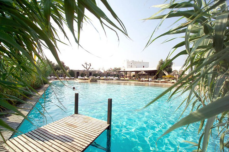 Masseria Torre Coccaro hotel swimming pool