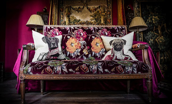 Royal Dog Couch Pillows