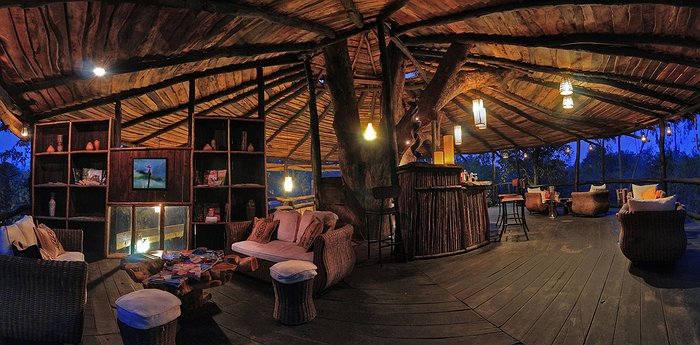 Tree House Hideaway - In the shade of the Banyan Tree