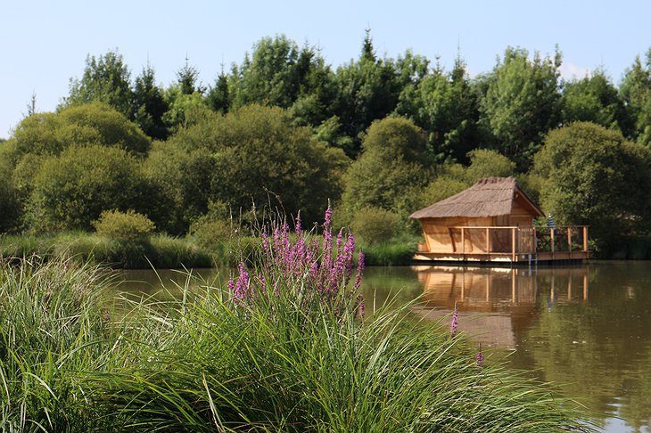 Floating wooden hut in the nature