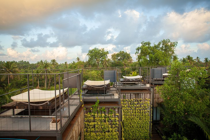 Bangkok Tree House nests rooftops